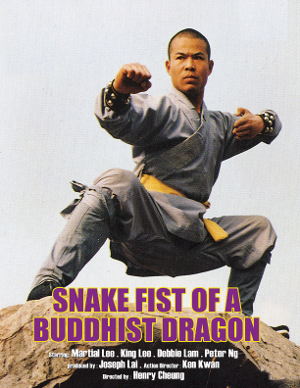 SNAKE FIST OF A BUDDHIST DRAGON 300x388 IFD